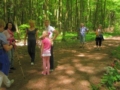 Wald IMG 5705